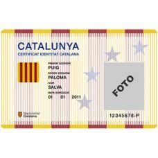 Petició CIC Català